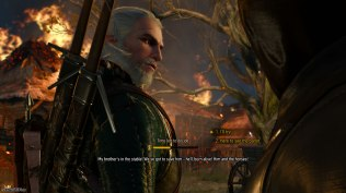 The Witcher 3 - Wild Hunt PC 025
