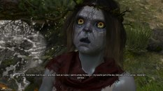 The Witcher 3 - Wild Hunt PC 027