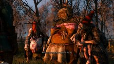 The Witcher 3 - Wild Hunt PC 030