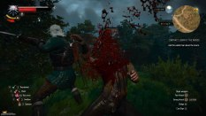 The Witcher 3 - Wild Hunt PC 034