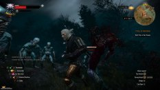 The Witcher 3 - Wild Hunt PC 037