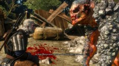 The Witcher 3 - Wild Hunt PC 038