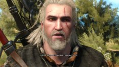 The Witcher 3 - Wild Hunt PC 046