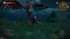 The Witcher 3 - Wild Hunt PC 053