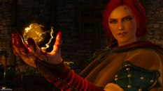The Witcher 3 - Wild Hunt PC 055