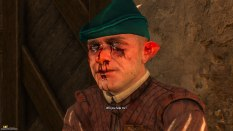 The Witcher 3 - Wild Hunt PC 058