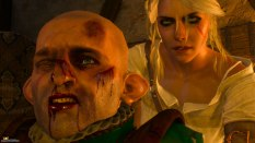 The Witcher 3 - Wild Hunt PC 062