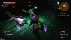 The Witcher 3 - Wild Hunt PC 067