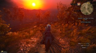 The Witcher 3 - Wild Hunt PC 080