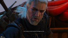 The Witcher 3 - Wild Hunt PC 100