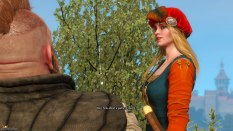The Witcher 3 - Wild Hunt PC 102