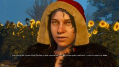 The Witcher 3 - Wild Hunt PC 106