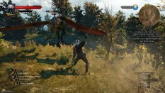 The Witcher 3 - Wild Hunt PC 116