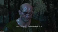 The Witcher 3 - Wild Hunt PC 117