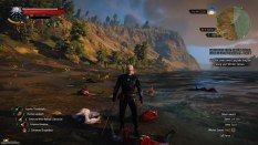 The Witcher 3 - Wild Hunt PC 118