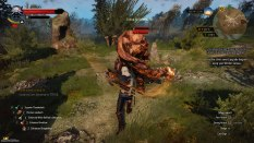 The Witcher 3 - Wild Hunt PC 119
