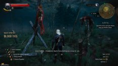 The Witcher 3 - Wild Hunt PC 121