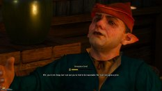 The Witcher 3 - Wild Hunt PC 122