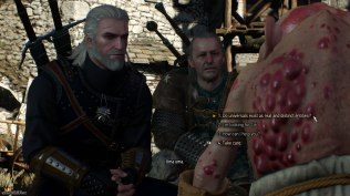 The Witcher 3 - Wild Hunt PC 127