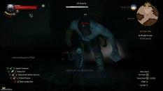 The Witcher 3 - Wild Hunt PC 131