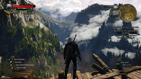 The Witcher 3 - Wild Hunt PC 139