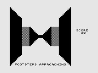 3D Monster Maze ZX81 22