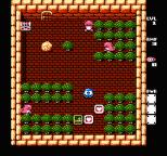 Adventures of Lolo 3 NES 08