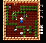 Adventures of Lolo 3 NES 16