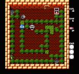 Adventures of Lolo 3 NES 25
