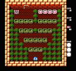 Adventures of Lolo 3 NES 27