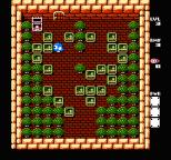 Adventures of Lolo 3 NES 28