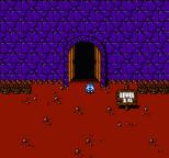 Adventures of Lolo 3 NES 48