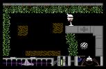 Arac C64 19