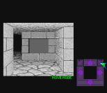 Dungeon Master SNES 05