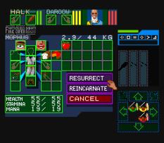 Dungeon Master SNES 10