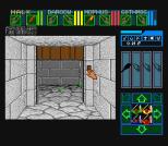 Dungeon Master SNES 25