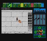 Dungeon Master SNES 35