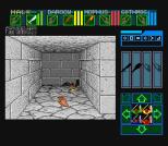 Dungeon Master SNES 36