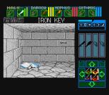 Dungeon Master SNES 37