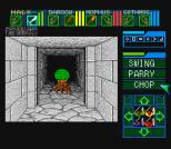 Dungeon Master SNES 40
