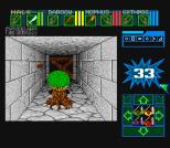Dungeon Master SNES 41