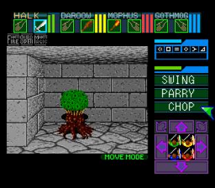 Dungeon Master SNES 42