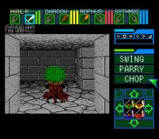 Dungeon Master SNES 43