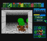 Dungeon Master SNES 47