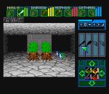 Dungeon Master SNES 48