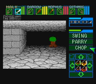 Dungeon Master SNES 53
