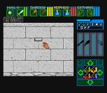 Dungeon Master SNES 79