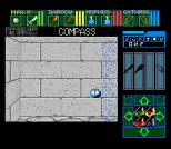 Dungeon Master SNES 81