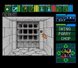 Dungeon Master SNES 83