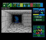 Dungeon Master SNES 85